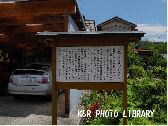 5月4日坂本宿14