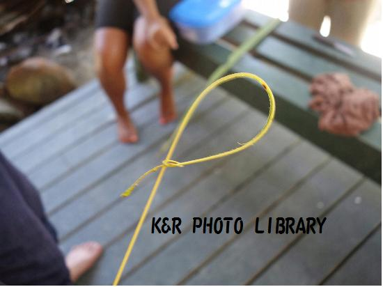 2015年7月19日エビ獲り竿
