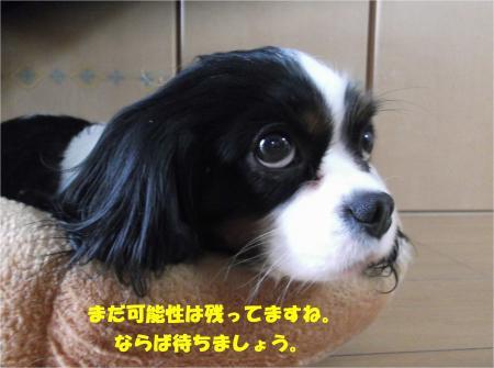00_convert_20160226191650.jpg