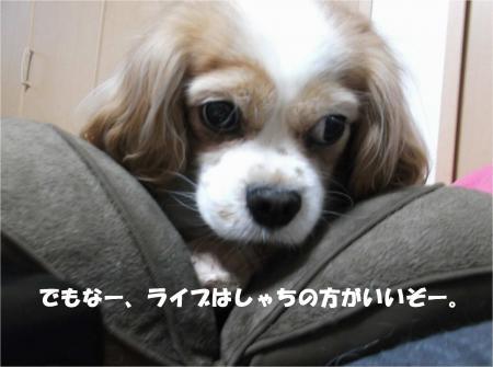 01_convert_20160226191700.jpg