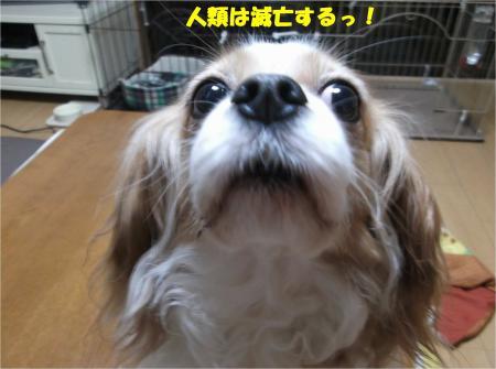 02_convert_20160217192807.jpg