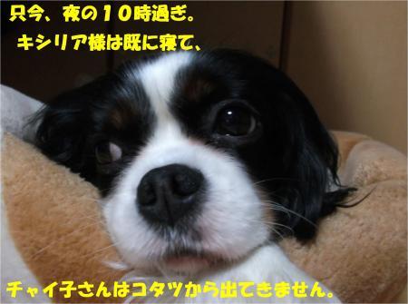 02_convert_20160218183328.jpg