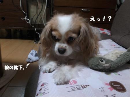 03_convert_20160308190842.jpg