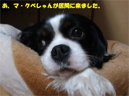 04_convert_20160218183349.jpg