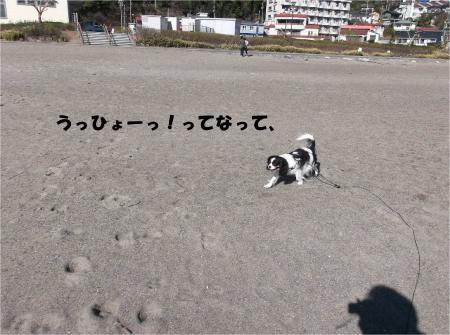 04_convert_20160223192230.jpg
