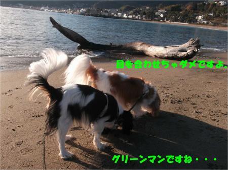 05_convert_20160225192553.jpg