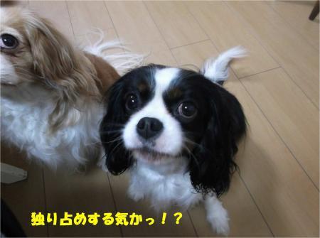 05_convert_20160315192757.jpg