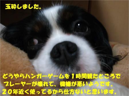 06_convert_20160218183408.jpg