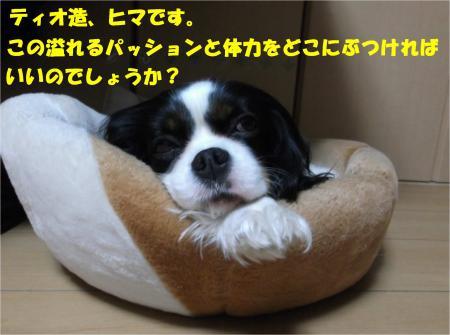 07_convert_20160218183420.jpg