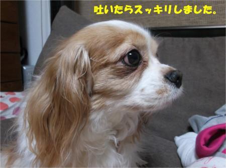 07_convert_20160310193828.jpg