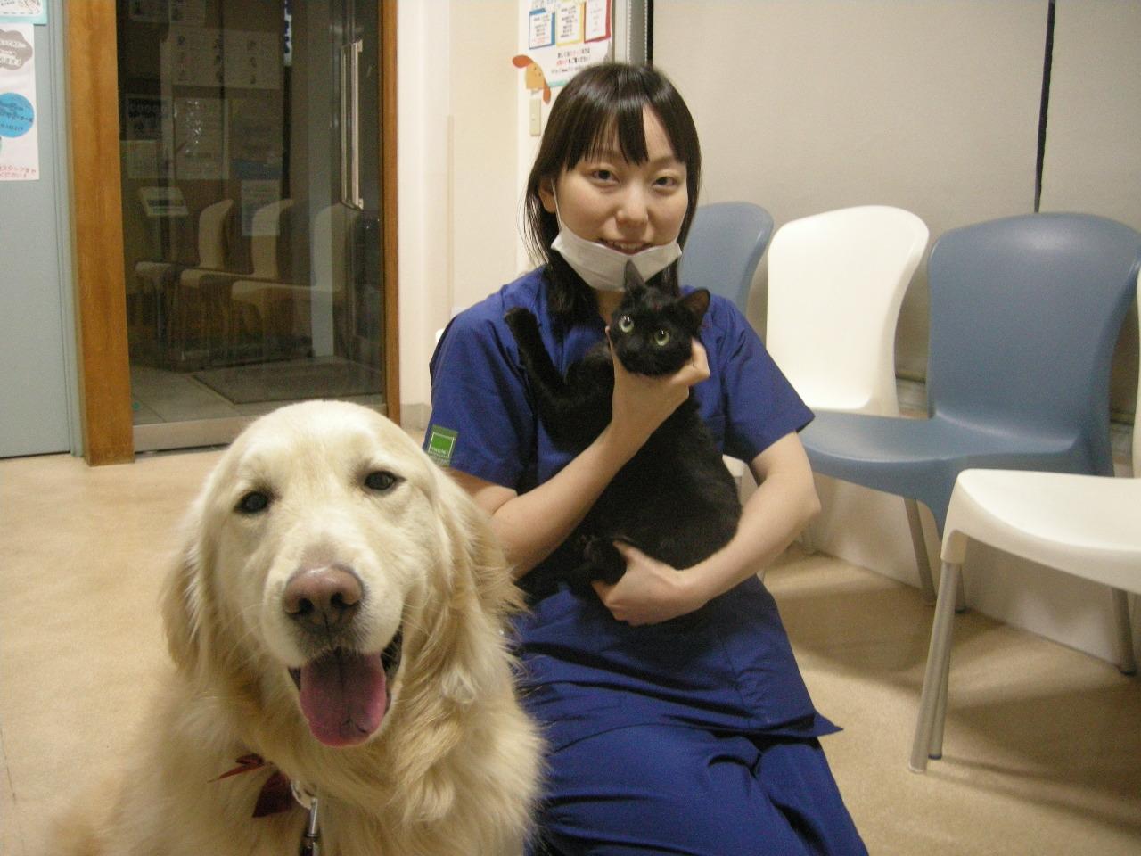 犬と猫と松浦先生