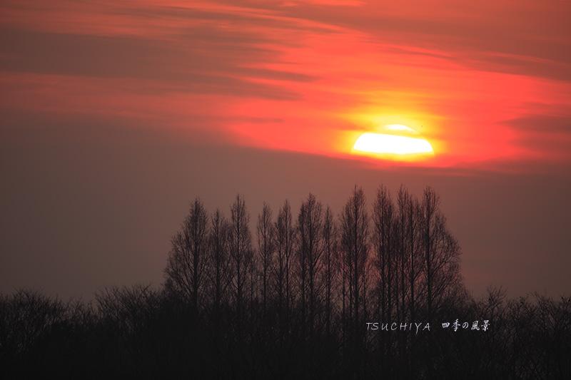 秋ヶ瀬公園の夕日