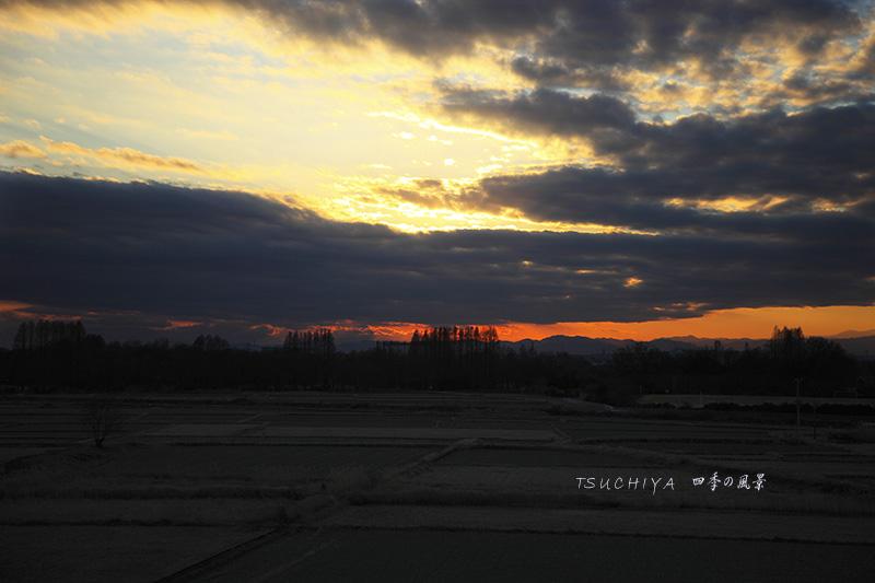 秋ヶ瀬公園の夕日 2