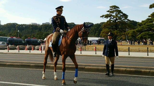 騎乗警官 皇居