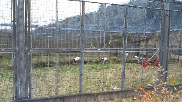 160210 岡山県自然保護センター④ ブログ用