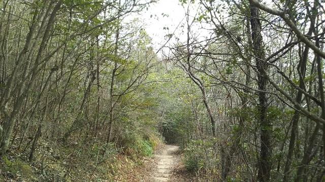 160210 岡山県自然保護センター⑨ ブログ用