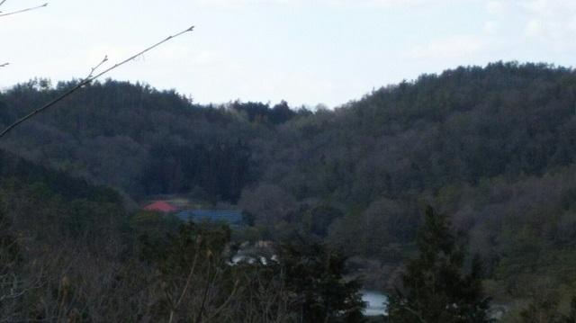 160210 岡山県自然保護センター⑩ ブログ用