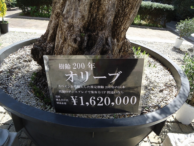 280321 (357)
