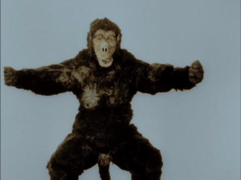 巨猿 ゴロー