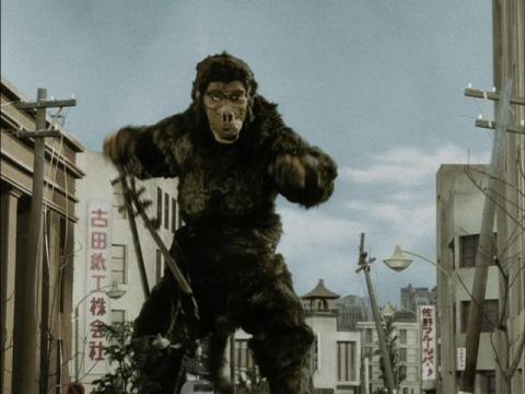 五郎を探しに、街に出て来たゴロー