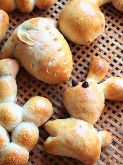 からすのパンやさん7