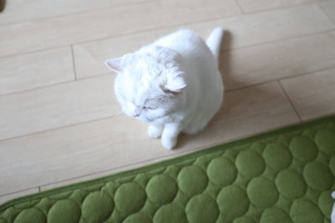 urabanashi-3850.jpg