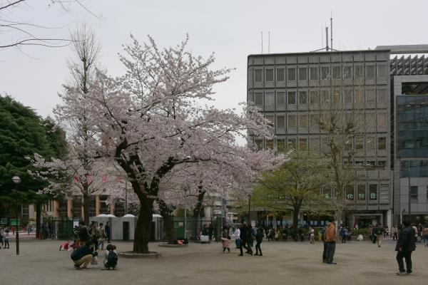 ikebikuro16040661.jpg