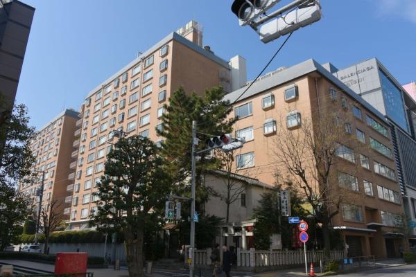 minamiaoyama16020030.jpg