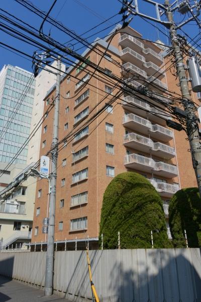 minamiaoyama16020045.jpg