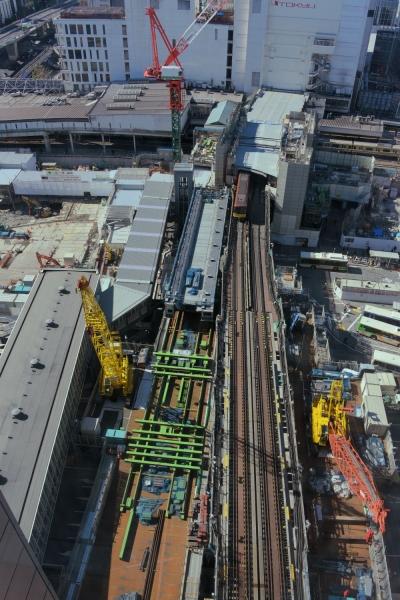 shibuya16020013.jpg