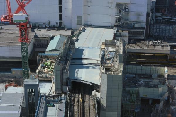 shibuya16020017.jpg
