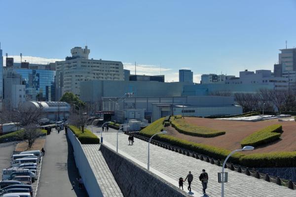 shibuya16020114.jpg