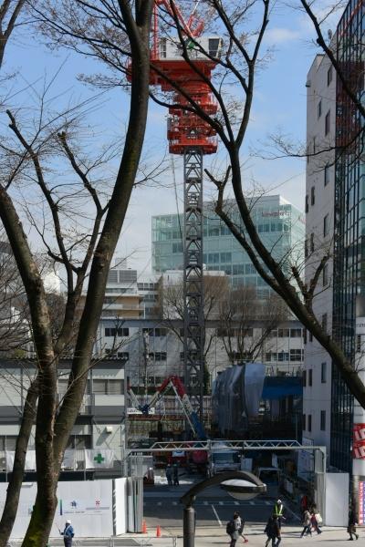 shibuya16030277.jpg