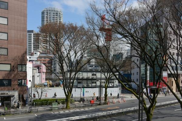 shibuya16030278.jpg