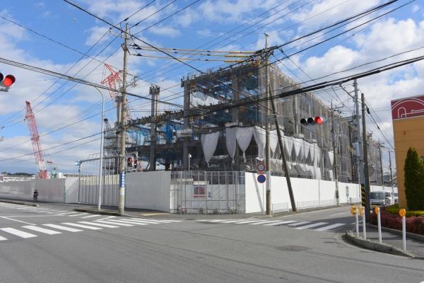 tsunashima16020020.jpg
