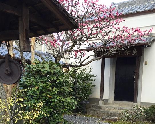滋賀県義仲寺