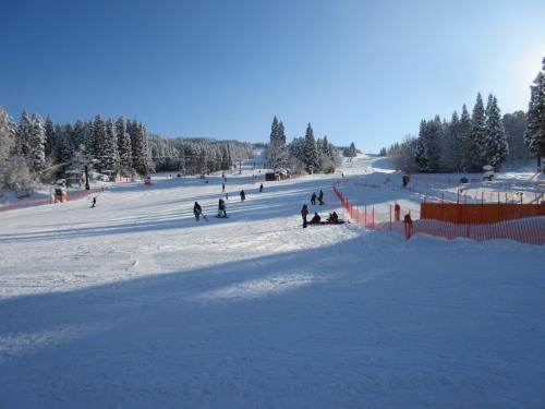 ゲレンデは最高の雪質