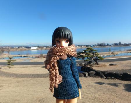 28_02_27 群馬県のつつじがおか公園 2