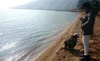 2016 キラキラ琵琶湖 貝 拾う