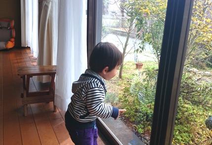 2016 4 ゆうくん 窓