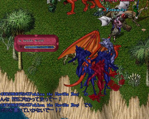 wkkgov160229_09.jpg