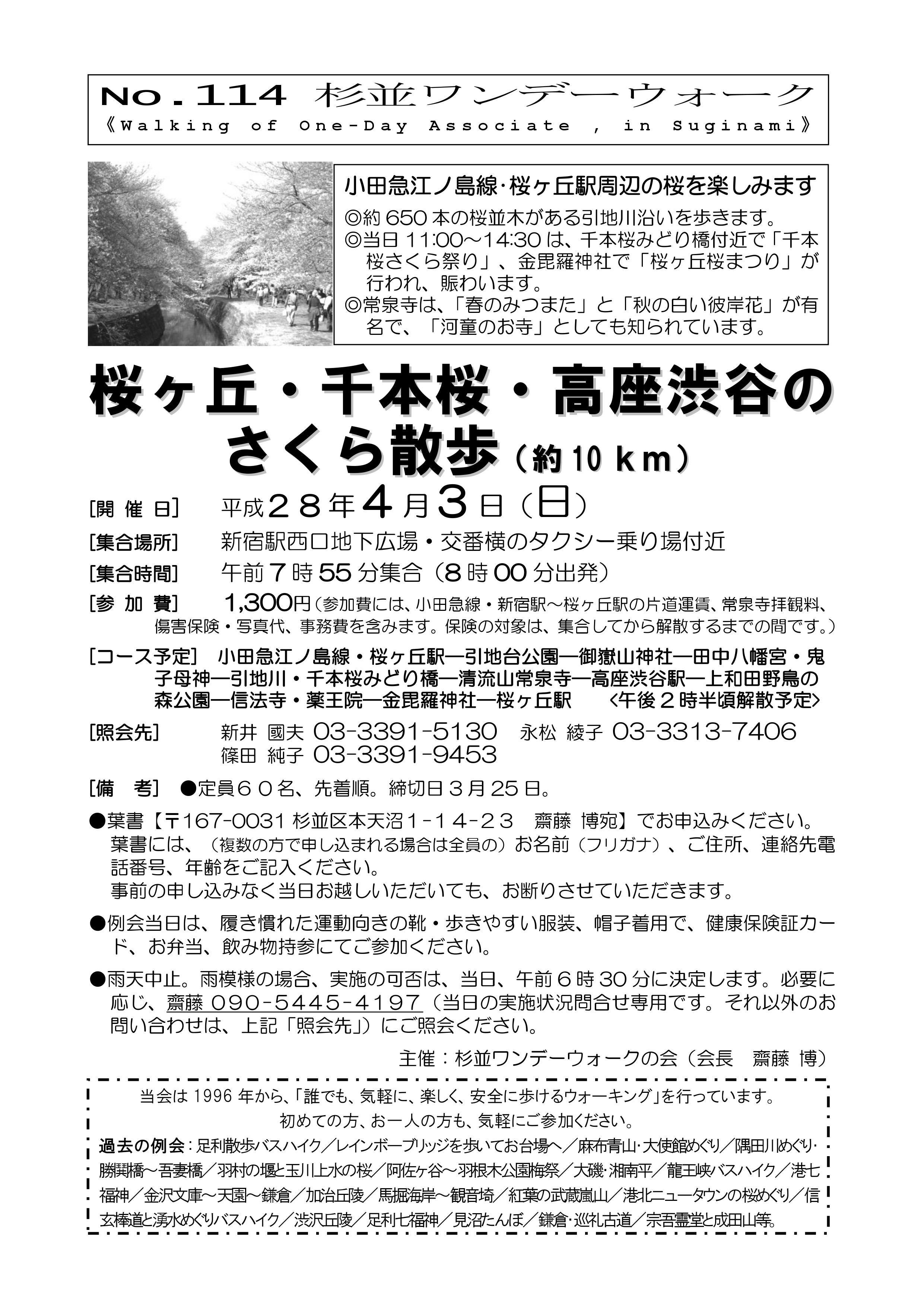 No114-桜ケ岡・千本桜・高座渋谷のさくら散歩