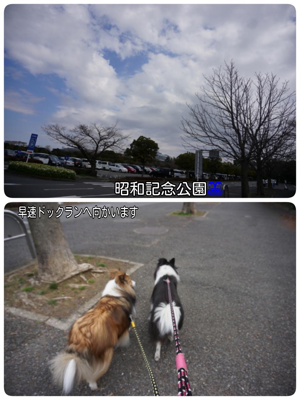 16-03-26-16-46-08-253_deco.jpg