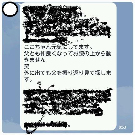 20160404_095605.jpg