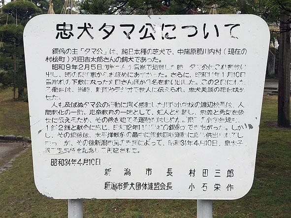 tamakou-hakusan-3
