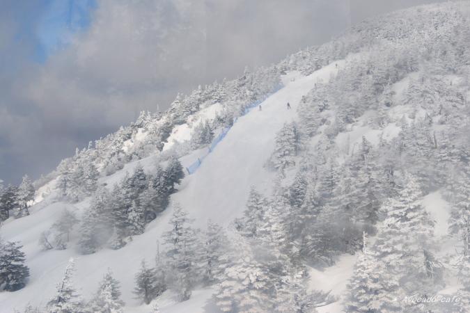 スキーヤー4