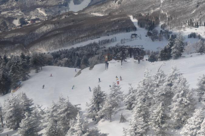 スキーヤー5