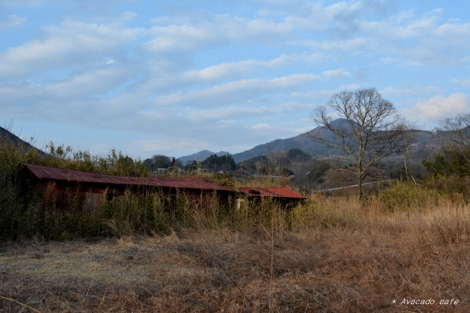 赤い小屋3
