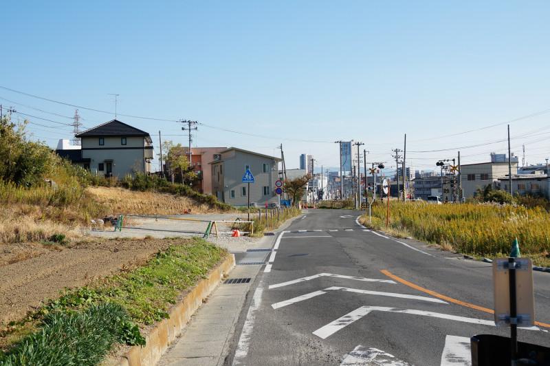 tobu_kansen_echigo_kaido_railroad_crossing.jpg