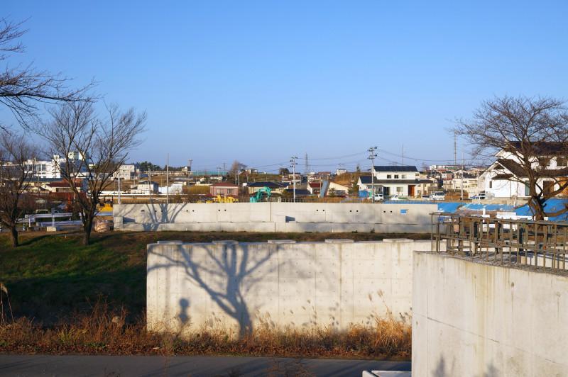 tobu_kansen_sakuragi_koku1.jpg